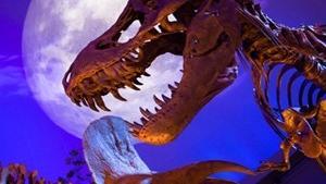 Le mois des dinosaures Le mois des dinosaures