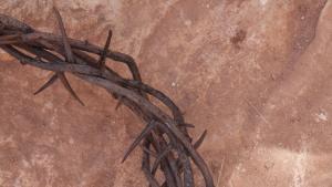 Killing Jesus Killing Jesus
