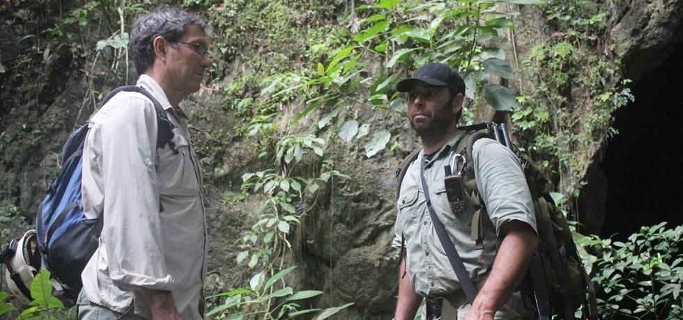 סיירת הטורפים: בופאלו במנוסה