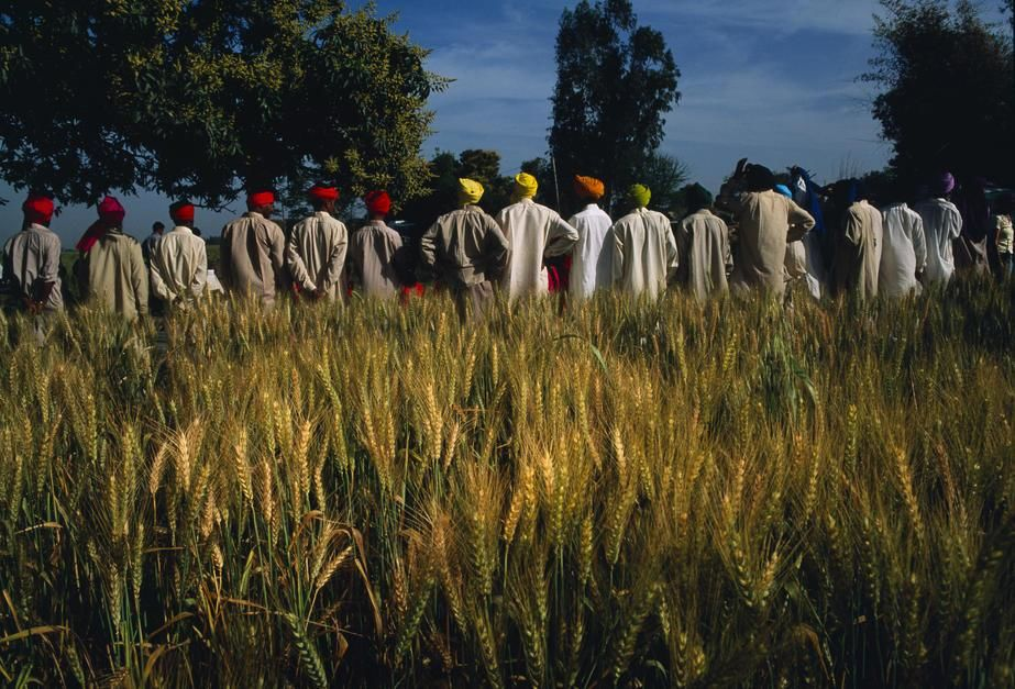 Costumed extras stand in a field of grain while waiting to go on set in Bombay. India. [Dagens foto - september 2011]