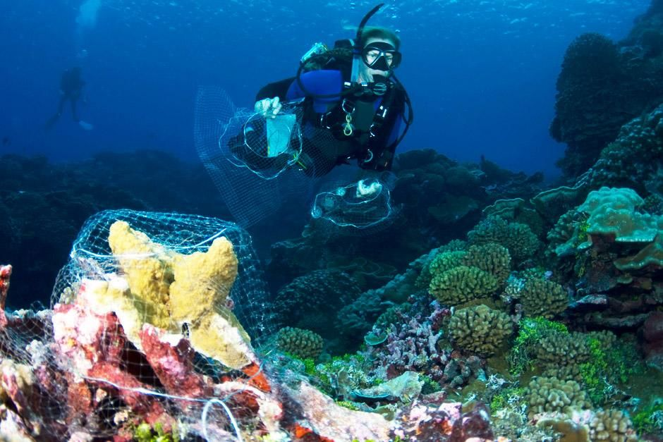 Millennium Atoll: A team of scientist are studying the pristine coral reefs in a hidden paradise ... [Dagens billede - maj 2012]