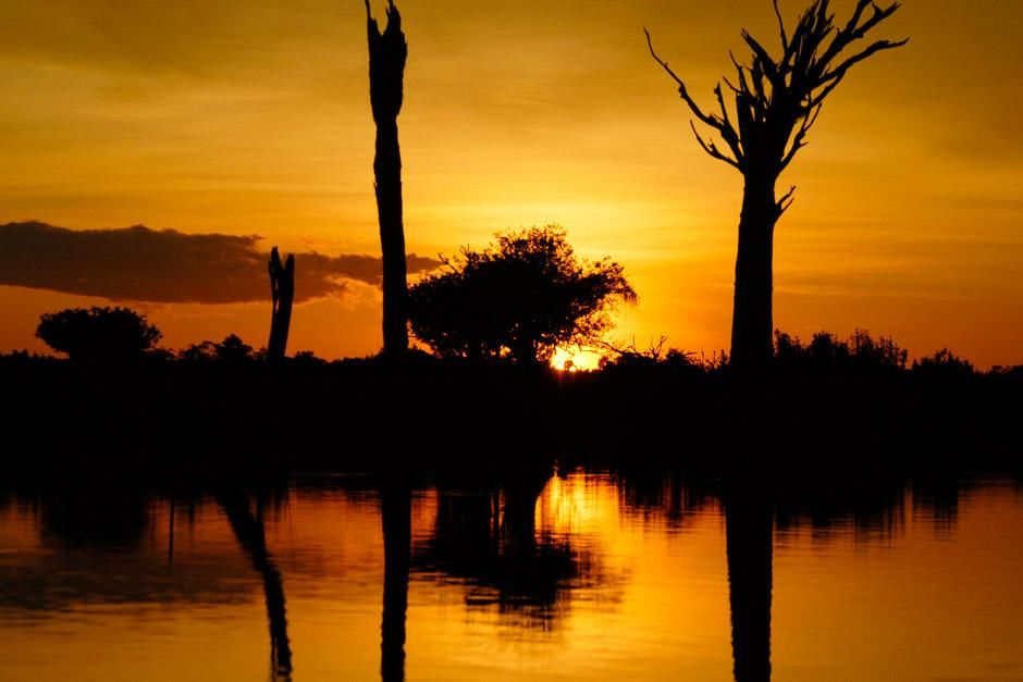 Zonsondergang in de Amazone. De foto komt uit het programma Wild Amazon. [Photo of the day - juni 2012]