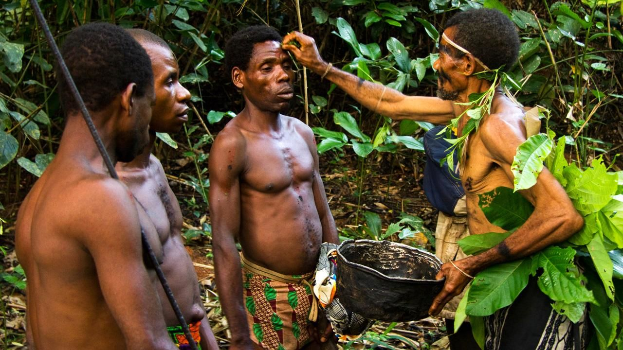 Cameroon, West Africa: Baka Pygmy hunters prepare for a hunt with a ceremony.  These Baka... [Dagens foto - augusti 2012]