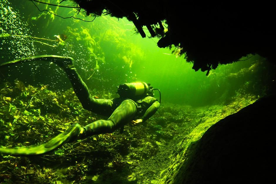 Okavango River Delta, Botswana: A diver swims through a channel in the underwater labyrinths that... [Photo of the day - augusti 2012]