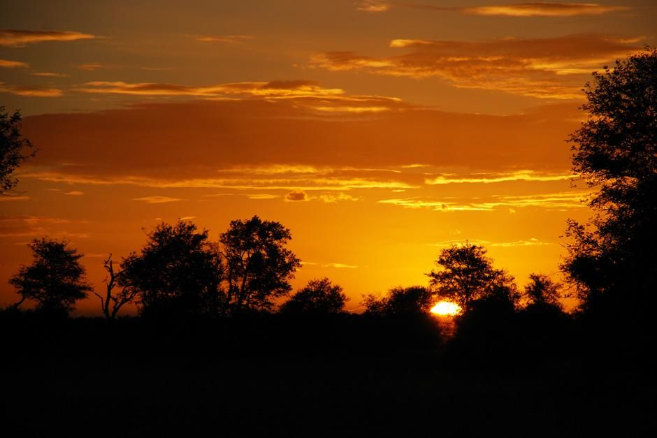 Sunset in the bush. Singita Kruger National Park is situated where two rivers meet, in an exclusi... [Dagens billede - august 2012]