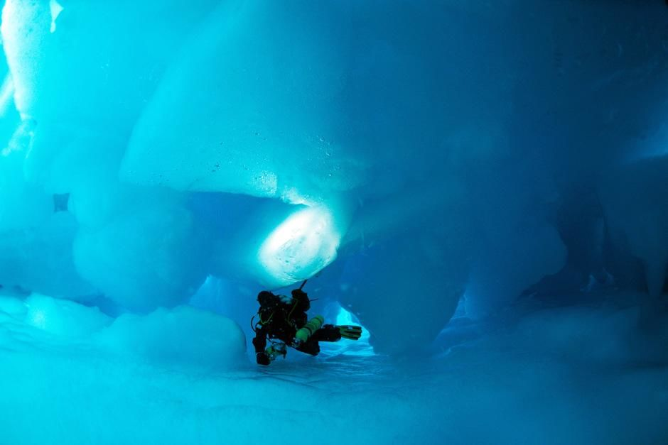 Great Canadian North: Diving under the pole. This image is from Deepsea Under the Pole. [Фото дня - Сентябрь 2012]