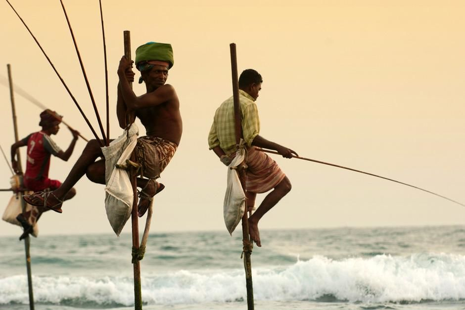 Hanging Fishermen of Galle, Sri Lanka. This image is from Laya Project. [Dagens foto - oktober 2012]