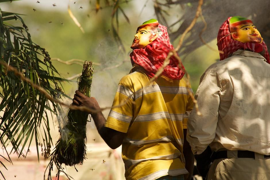 Richard Terry assists a group of honey hunters as they use burning foliage to smoke a swarm of be... [Photo of the day - December 2012]
