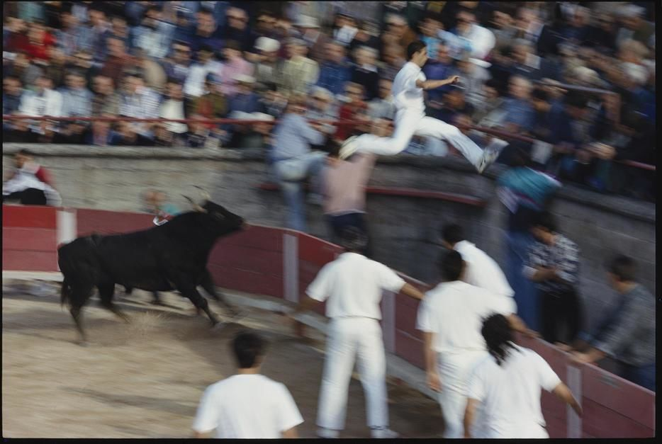 "A ""razeteur"" jumps for safety ahead of a charging bull in Saint Remy de Provence. France. [Photo of the day - December, 2011]"