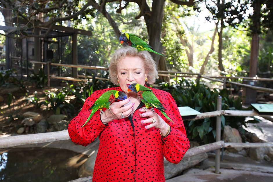 San Diego Safari Park, San Diego, California, USA: Betty White feeding some lorikeets. This... [Foto del día - enero 2014]