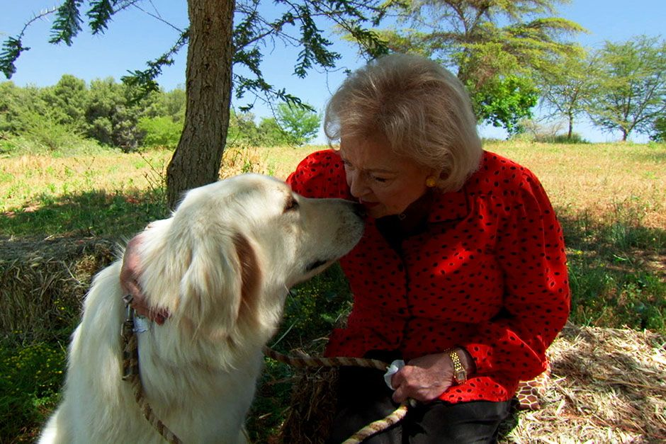 San Diego, California, USA: Betty White sitting with dog, Yeti, an Anatolian shepherd at the San... [Photo of the day - January 2014]
