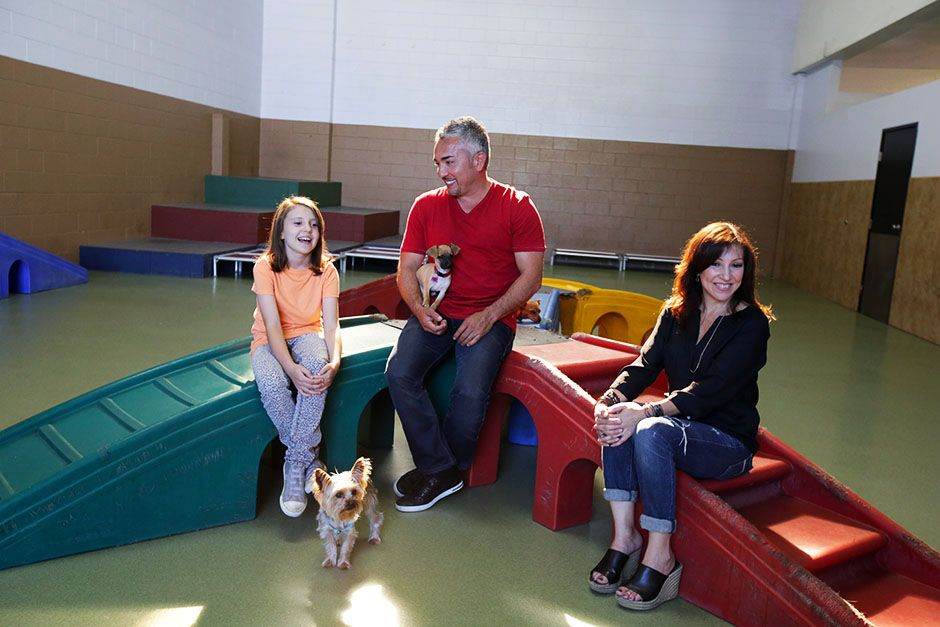 Brazil: Cesar Millan sitting with some companions. This image is from Cesar Millan Doggie... [Foto del día - enero 2014]