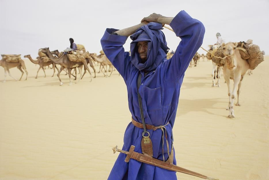A member of the salt camel caravan, near Fachi. [Dagens foto - januari 2012]