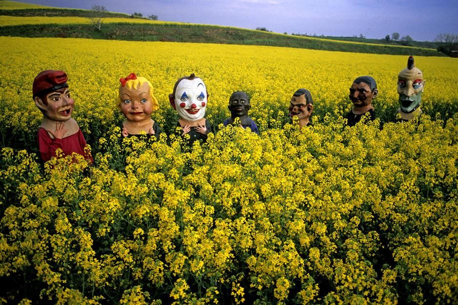 Masked young people in a mustard field en route to a summer festival. Masked young people in a mu... [Dagens foto - augusti 2011]