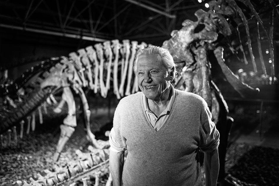 Lufeng Dinosaur National Geopark, China:  David in a museum with a dinosaur. This image is from... [Photo of the day - February 2014]
