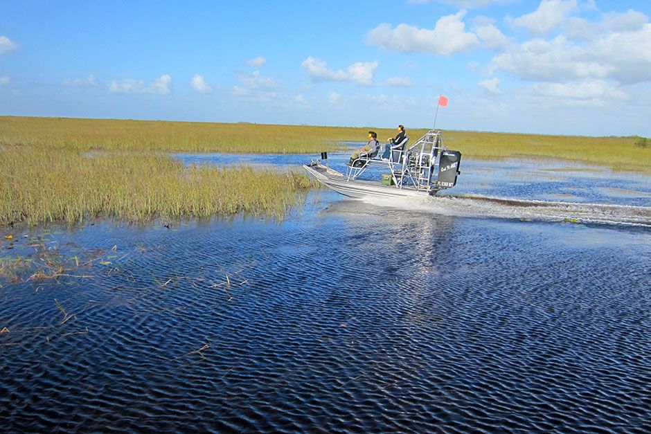 USA: Jose and Francis speed along the swamps as passengers in an airboat. This image is from... [Photo of the day - February 2014]