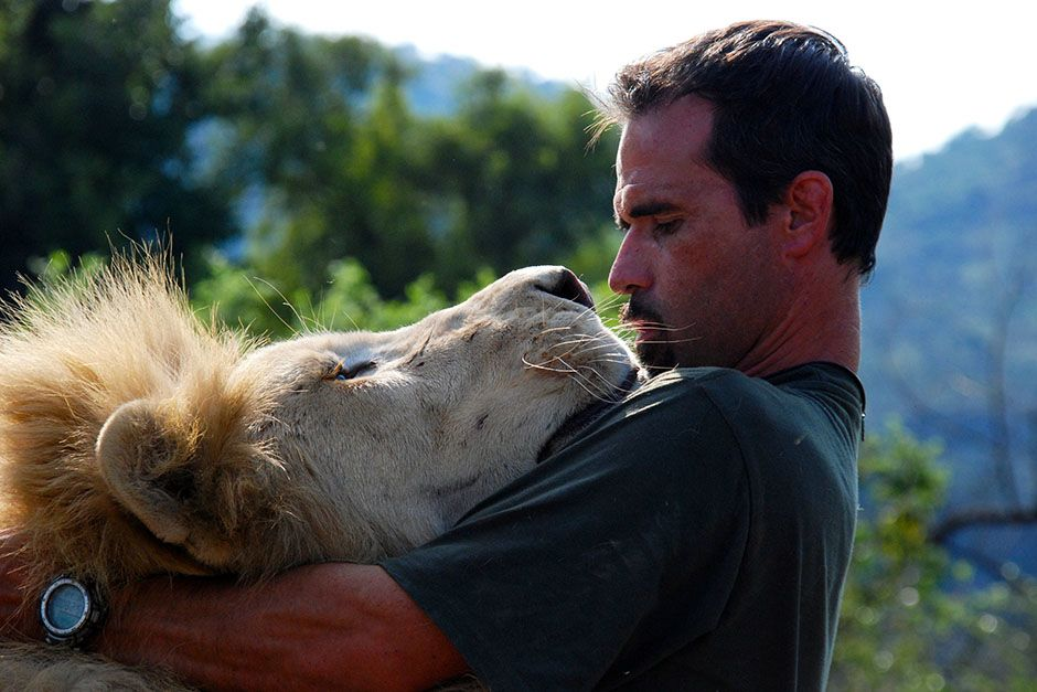 Kevin Richardson gets up close with a Lion. This image is from The Lion Whisperer. [Photo of the day - مارس 2014]