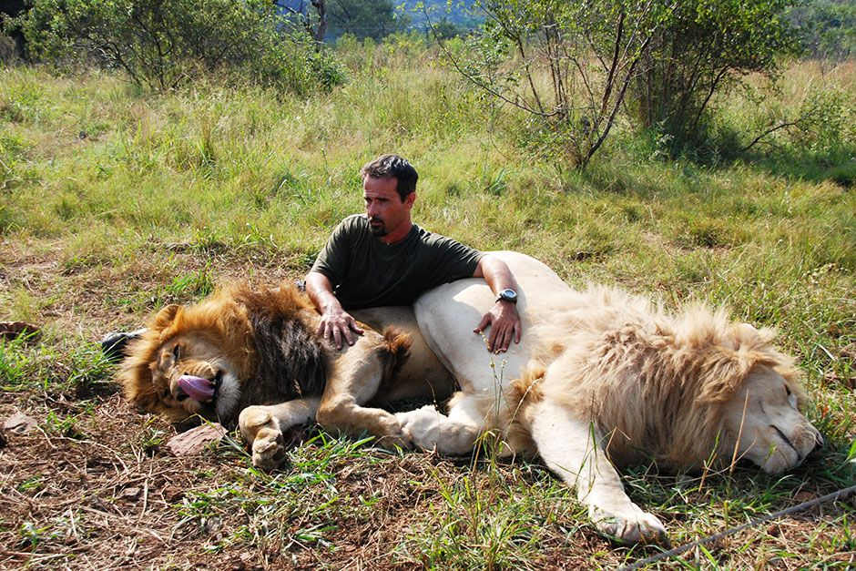 Kevin Richardson sitting with two resting lions. This image is from The Lion Whisperer. [Photo of the day - March 2014]