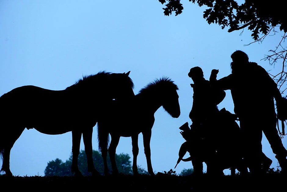 Neadrathal, Germany: Horses and crew at twilight. This image is from Hitler's Jurassic Monsters. [Photo of the day - June 2014]