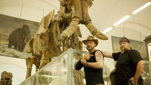 St Petersburg, Russia: Timothy King and Trevor Valle in front of mammoth skeleton at the Zoologic... Photo of the day - 28 July 2014