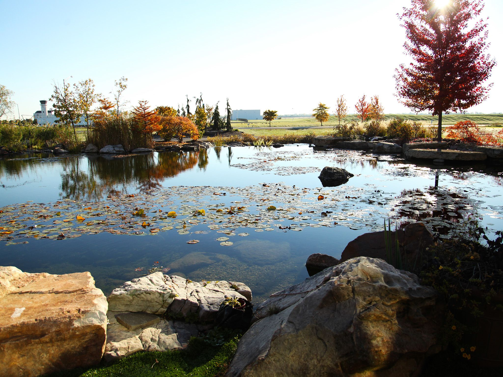 The massive pond at Aquascape headquarters.  This image is from Pond Stars. [Photo of the day - October 2014]