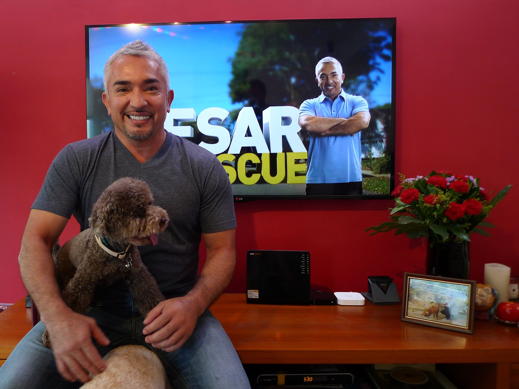 Hong Kong, China: Cesar Millan. This image is from Cesar To The Rescue Asia. [Photo of the day - نوامبر 2014]