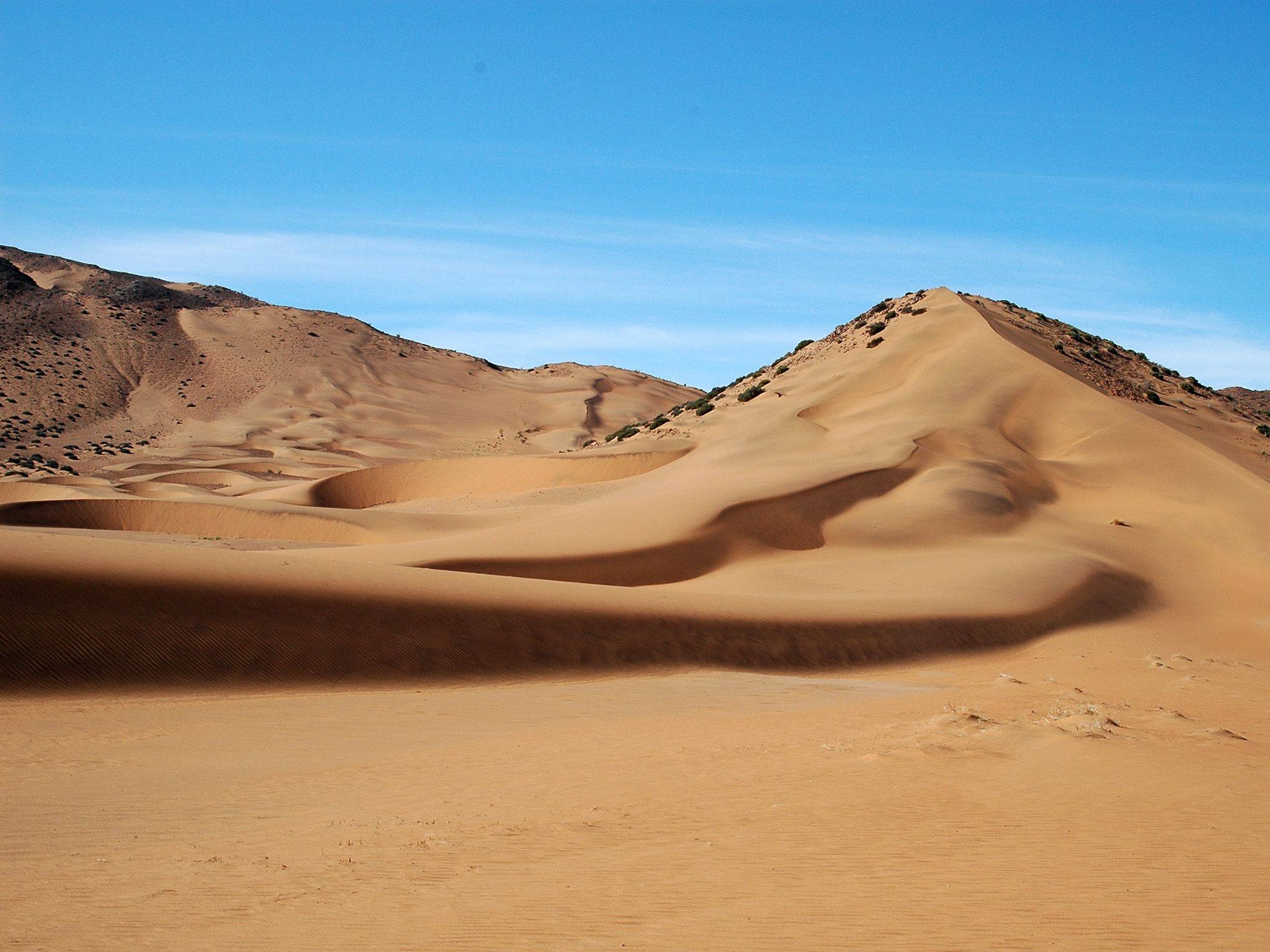 "The Namib Desert, the oldest desert in the world. The harsh desert environment seems ""deserted""... [Photo of the day - 十一月 2014]"