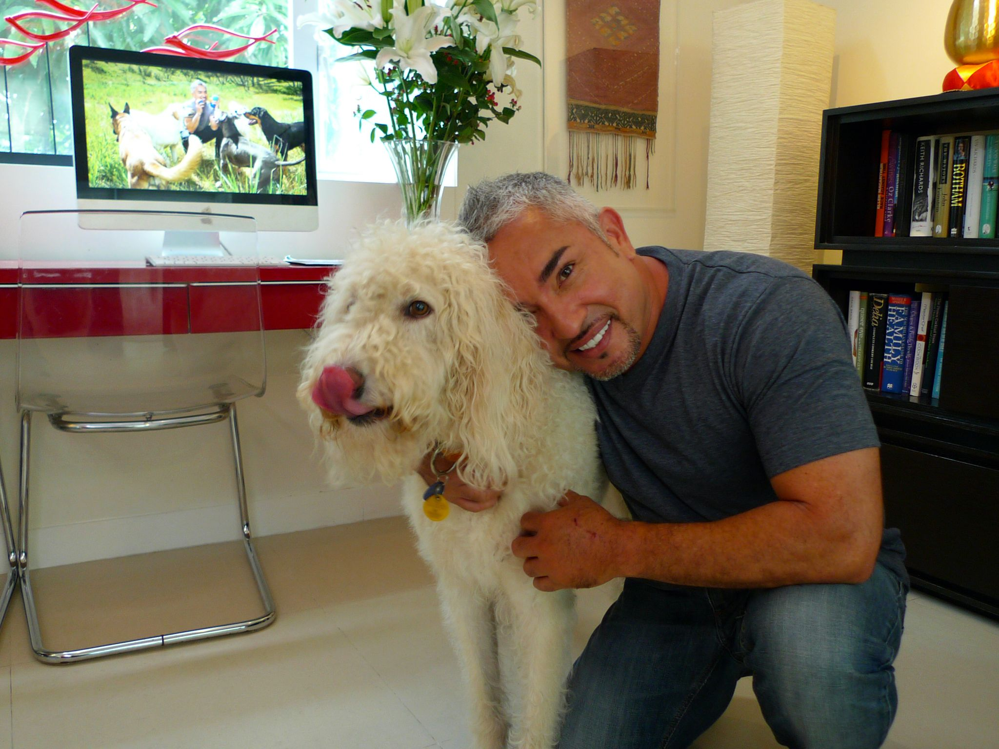 Hong Kong, China: Cesar poses with a dog. This image is from Cesar To The Rescue Asia. [Photo of the day - نوامبر 2014]