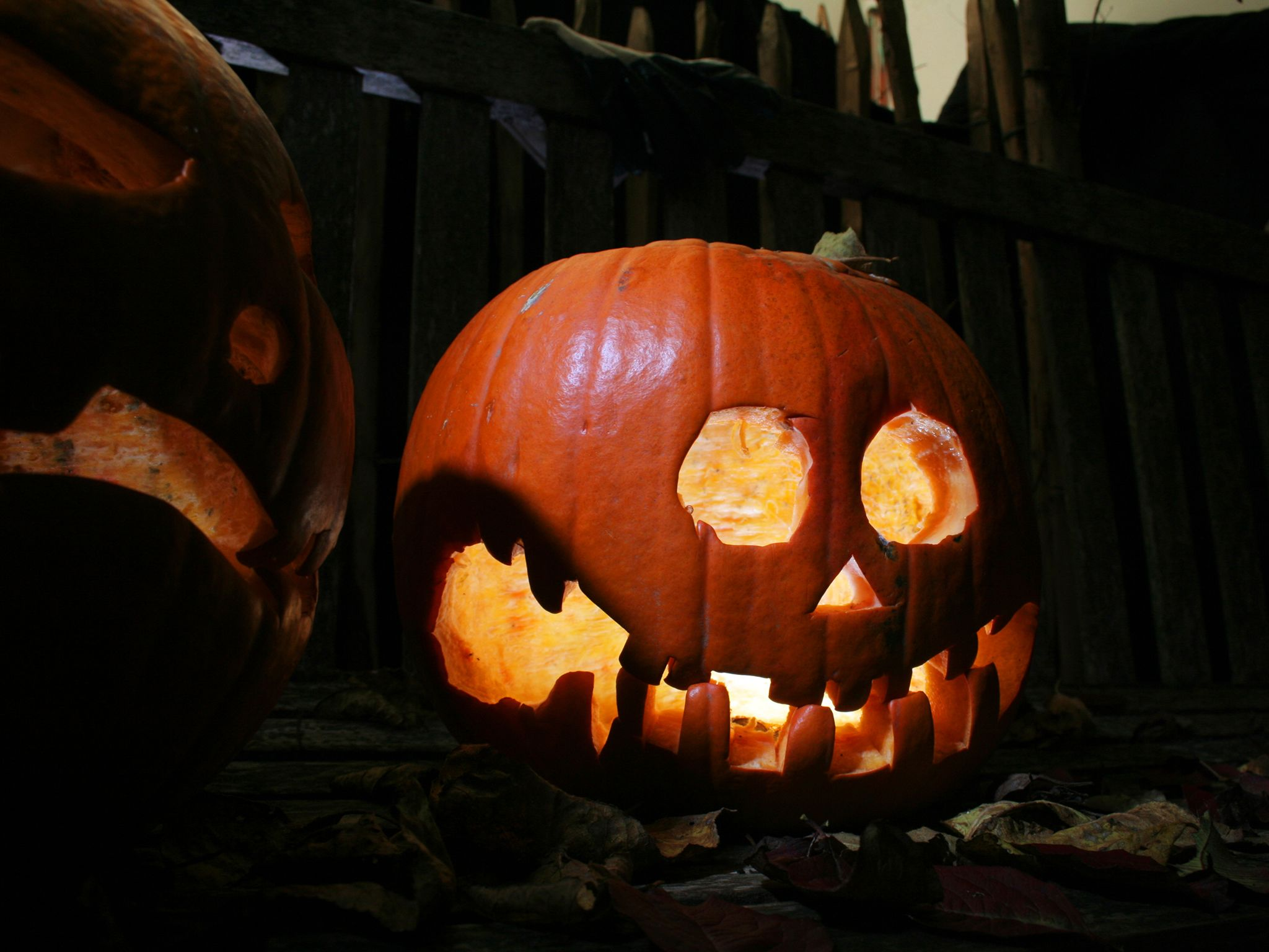 A jack-o-lantern. This image is from Secret Garden. [Photo of the day - January 2015]