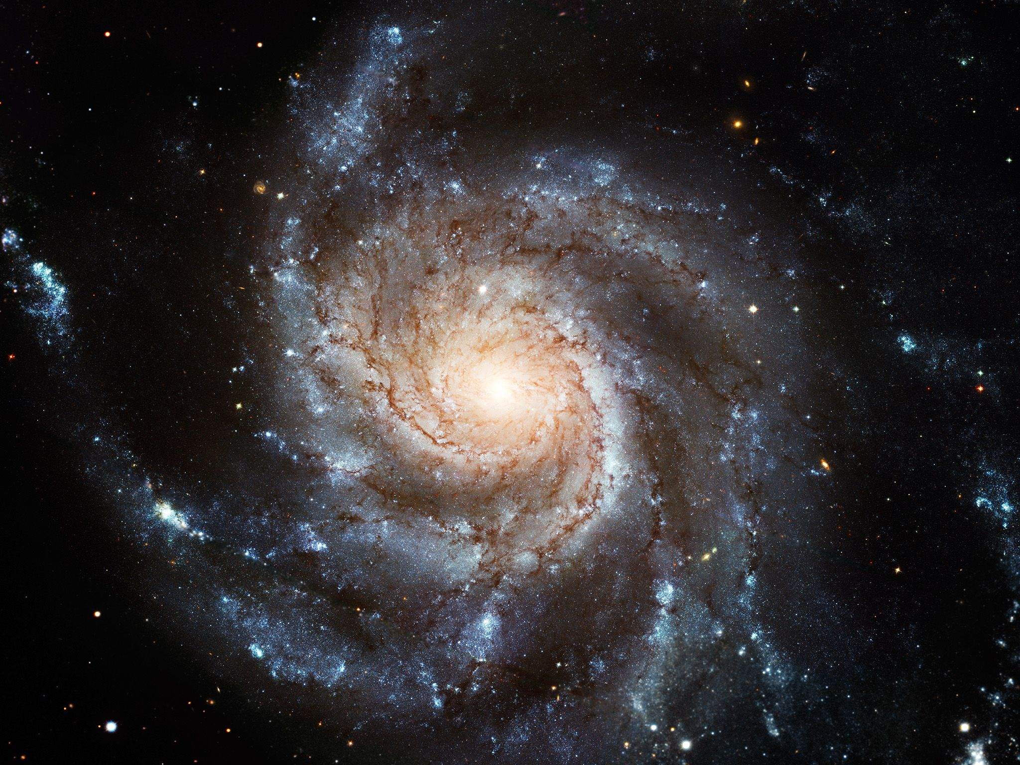 The Pin Wheel Galaxy. This image is from Hubble's Cosmic Journey. [Photo of the day - april 2015]