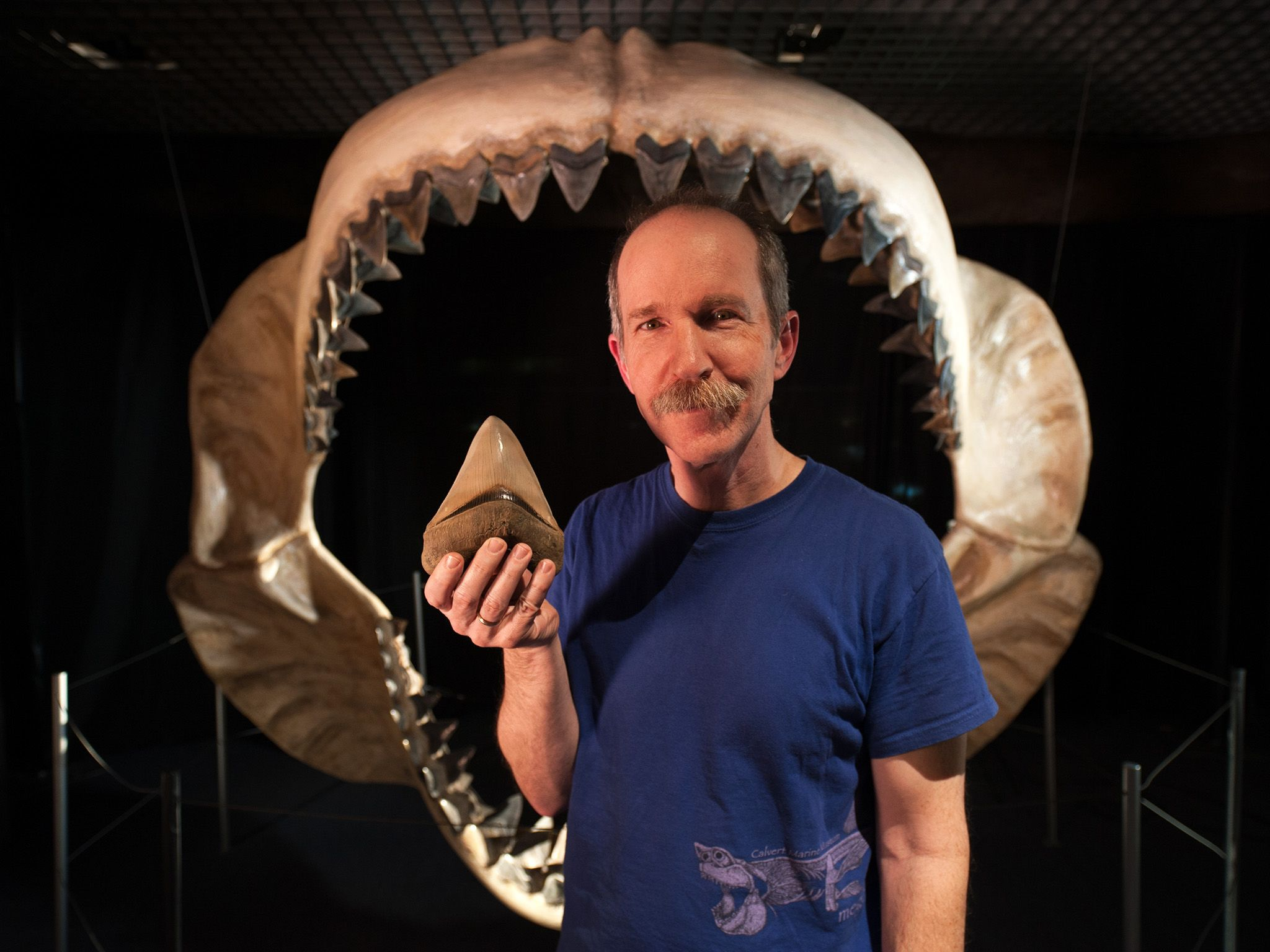 Baltimore, MD: Stephen J. Godfrey Ph.D. Curator of Paleontology, Calvert Marine Museum. Stephen... [Photo of the day - June 2015]