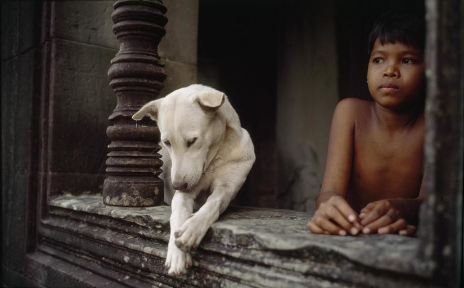 A boy and a dog at Angkor War temple. [  -  2011]