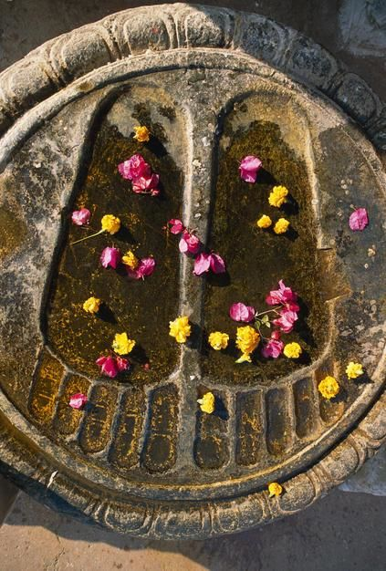 Buddha&#039;s footprings carved in stone and strewn with flowers at the Bodh Gaya Monastery in Bihar S... [Dagens billede - maj 2011]