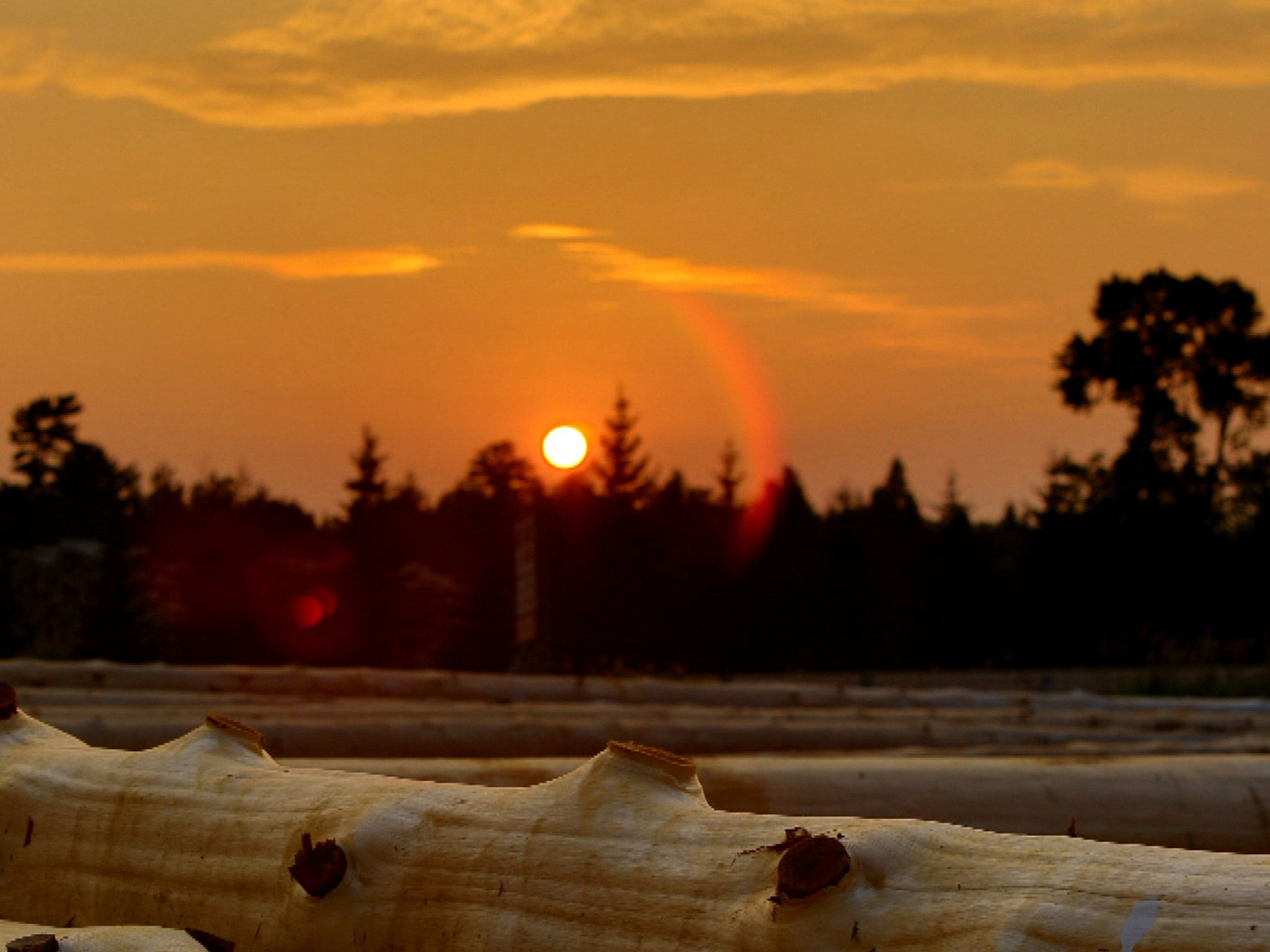 Utah: Sunset at the log yard.  This image is from Cabin Fever. [Photo of the day - July 2015]
