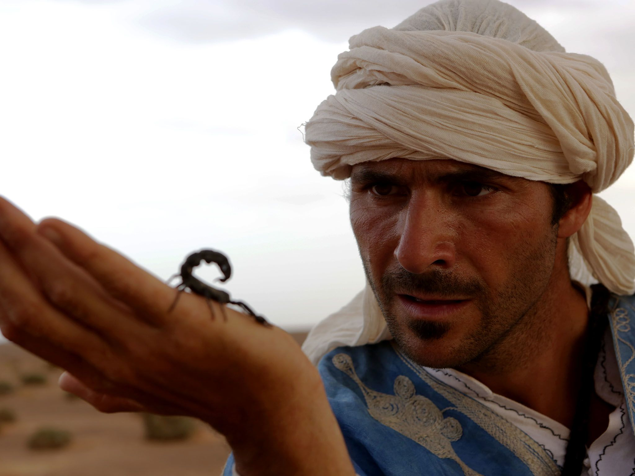Morocco: Hazen holds a poisonous scorpion. This image is from Primal Survivor. [Photo of the day - ژانویه 2016]