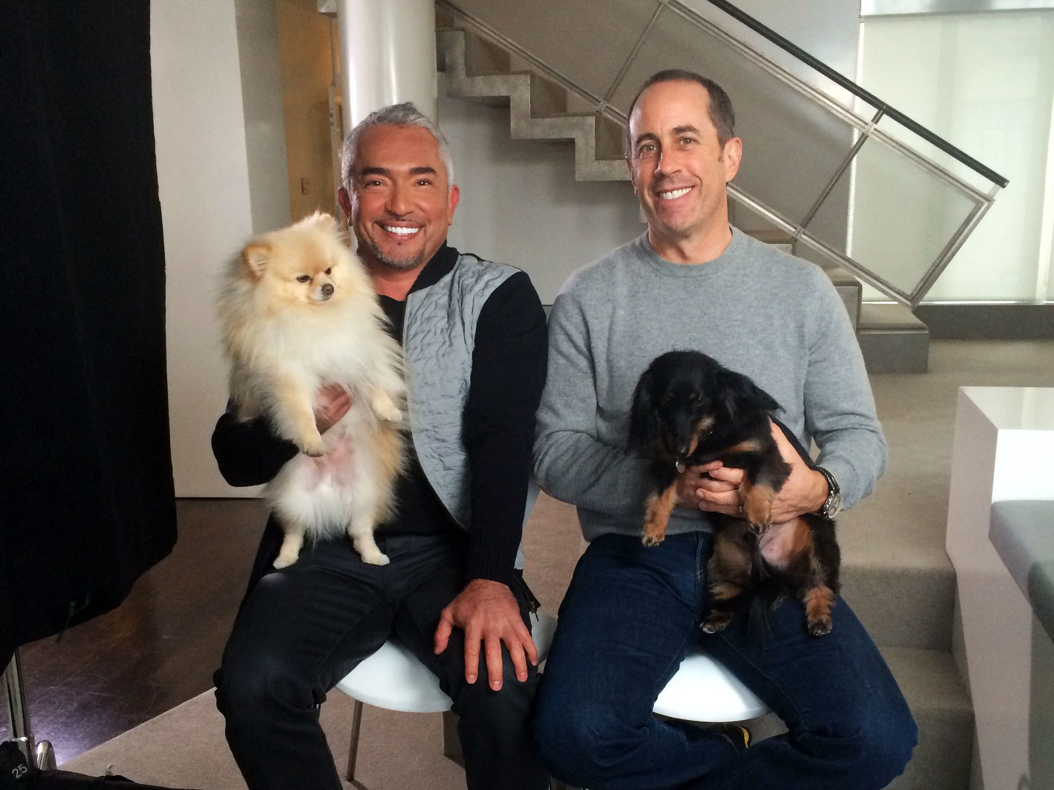 Cesar Millan, left, helps legendary comedian Jerry Seinfeld get better control of his two... [Photo of the day - May 2016]