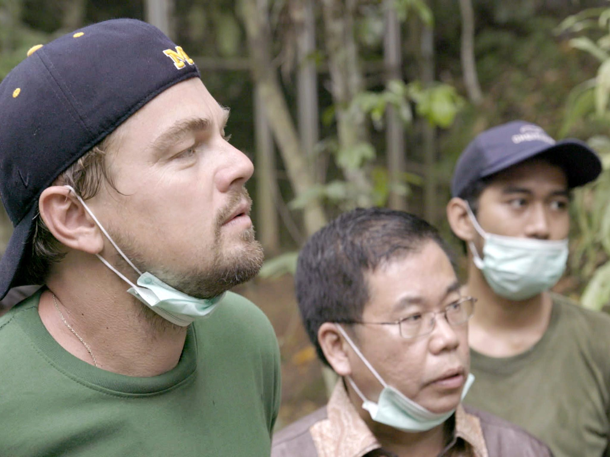 Indonesia: Leonardo with Orangutans in the Leuser Ecosystem. For two years, Leonardo DiCaprio... [Photo of the day - 十月 2016]