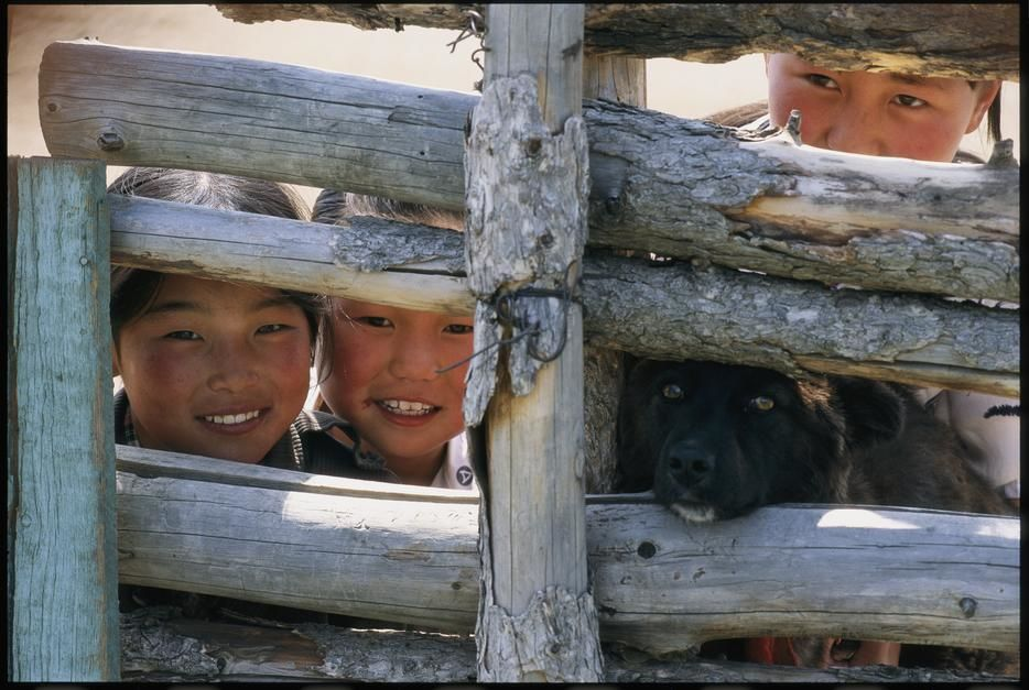 A dog and children of Mongolian herders look through a fence. Mongolia. [Fotografija dneva - avgust 2011]