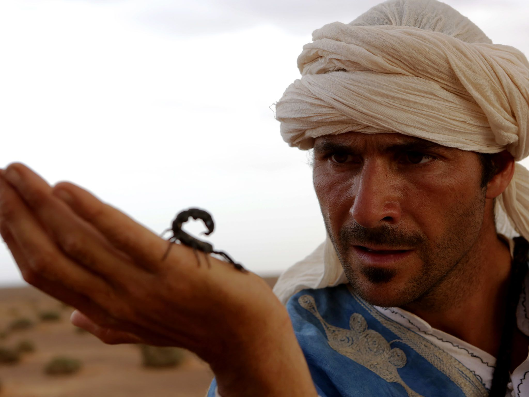 Morocco: Hazen holds a poisonous scorpion. This image is from Primal Survivor. [Photo of the day - May 2017]