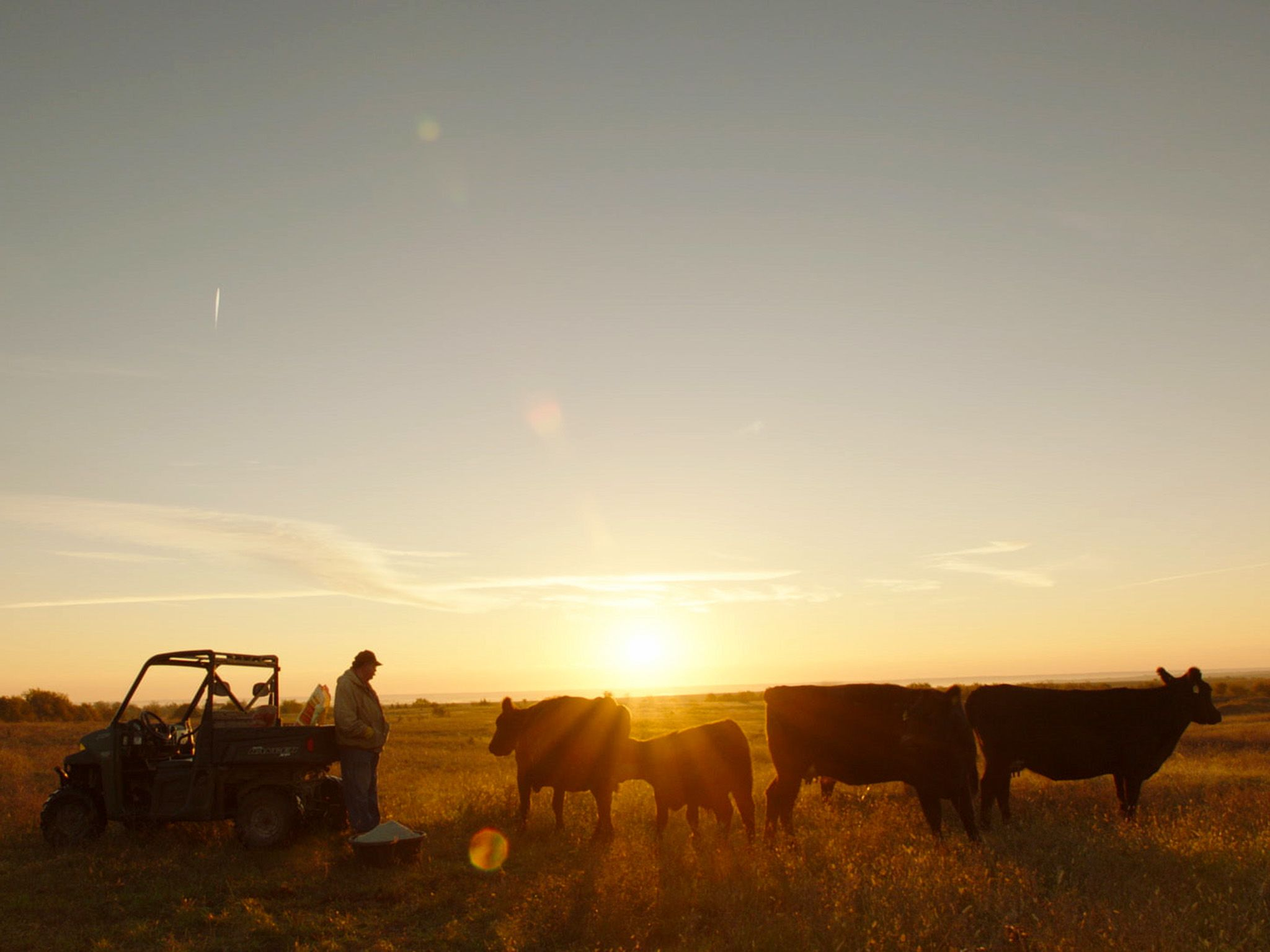 Wheaton, Kansas:  Donn Teske, a fifth generation farmer, and his cows on his farm. This image is... [Photo of the day - August 2017]