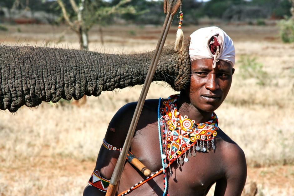 Kenya: Maasai warrior Boni listens up close to an African elephant. This image is from Warrior Ro... [Dagens foto - mars 2012]