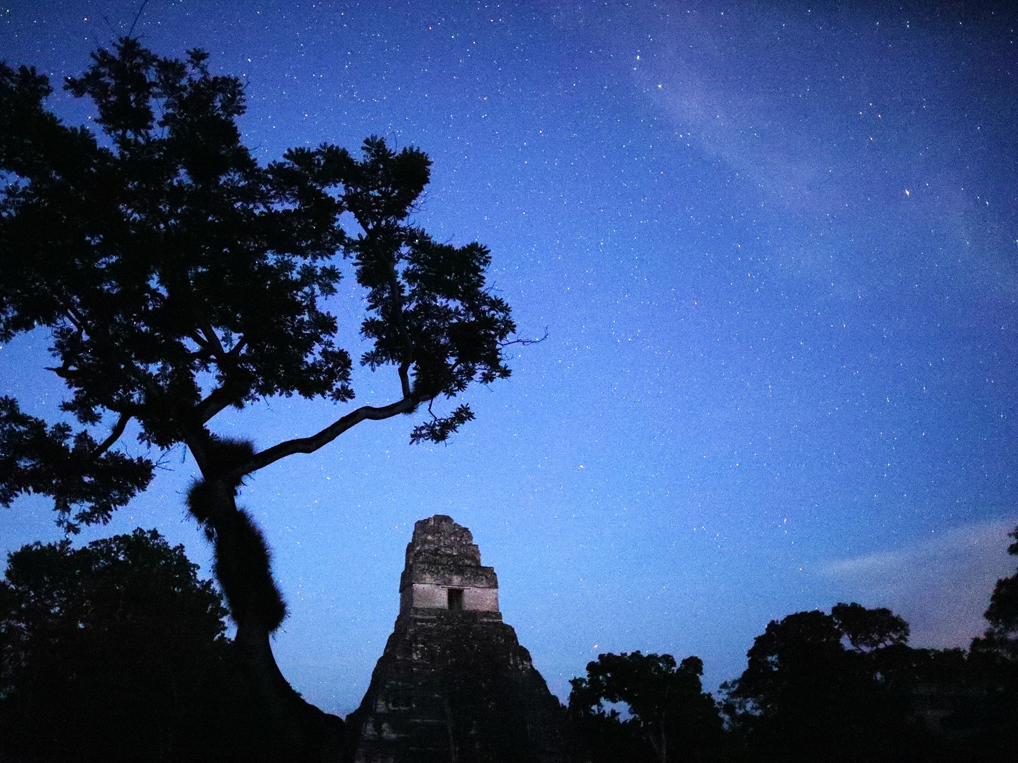 Tikal National Park, Guatemala:  Starry sky at night in Tikal National Park (This image is from... [Foto del giorno - febbraio 2018]