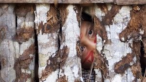 Amazon, Brazil:  A young child in an... [Photo of the day - 18 MARCH 2018]