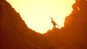 EVOLUÇÃO DAS ESPÉCIES: Do Dinossauro ao Perú fotografia