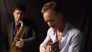 Sting photo
