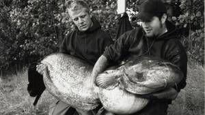 Ferocious Fish photo
