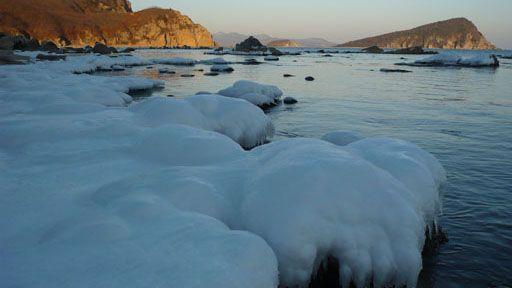 «Русское море» не будет замораживать инвестиционные программы в Заполярье