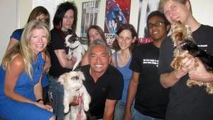 Puppy Mills, Boo and Bella photo
