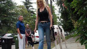 Hudson i Orchid i uprava za životinje Los Angelesa .