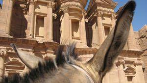 Petra Gallery 1 Foto